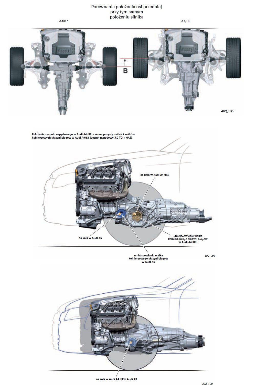 Audi A4 B8 i B7 na schemacie