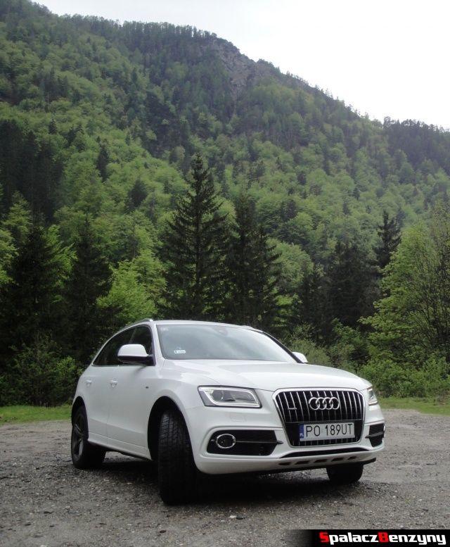 Audi Q5 3.0 TFSI na tle góry bokiem