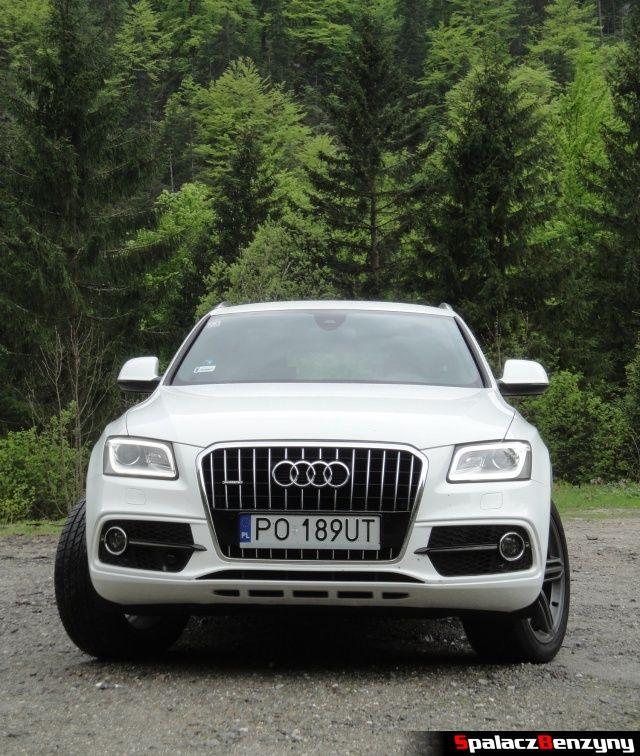 Audi Q5 3.0 TFSI przód góry las