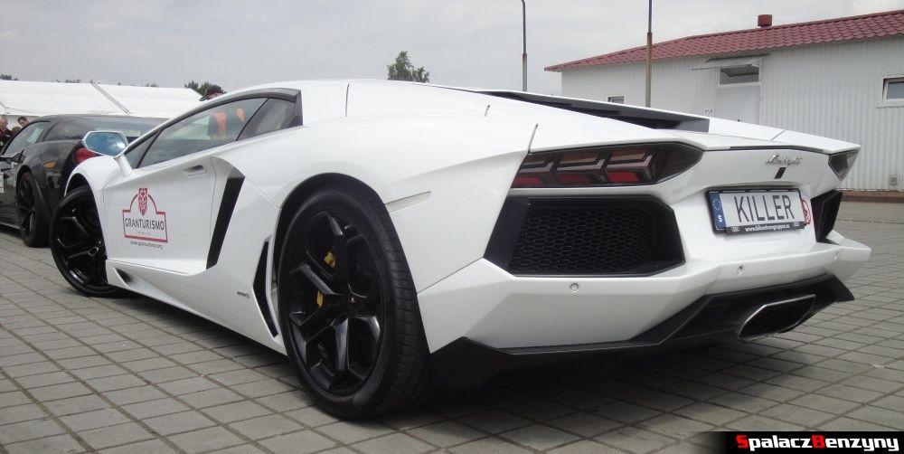 Biały Lamborghini Aventador tył na Gran Turismo Polonia 2013