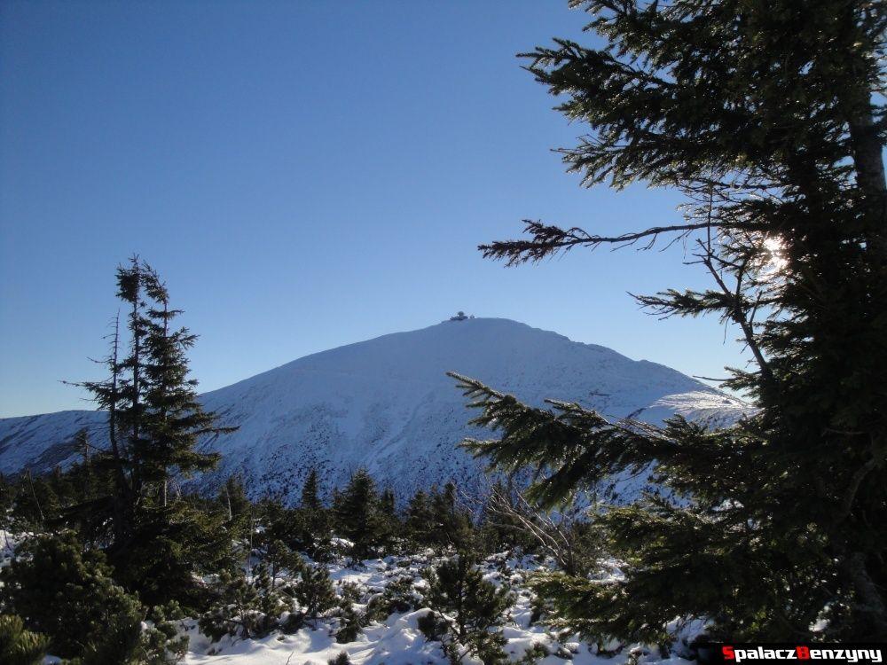 Widok na Śnieżkę z Kopy w Karpaczu